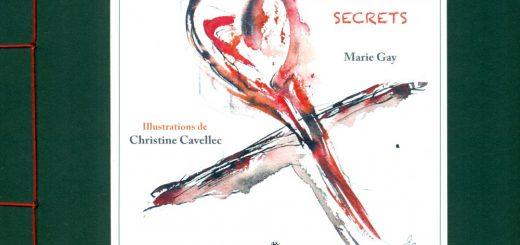 galerie0rdutemps_32-couv-les-rideaux-secrets-de-marie-gay
