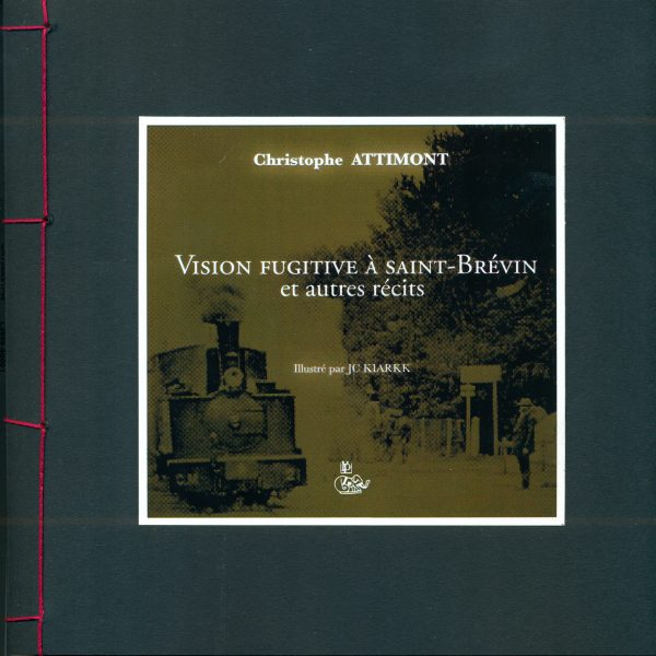 VISION FUGITIVE A SAINT-BREVIN ET AUTRES RECITS copie